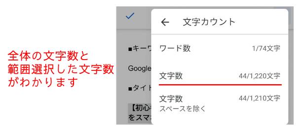 GoogleDocs14